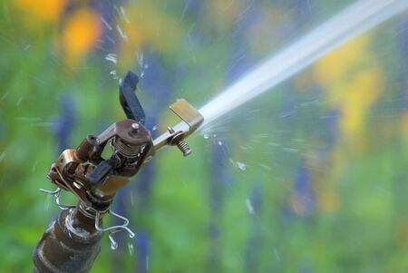 Sprinkler watering a colorful garden.