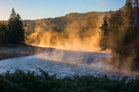 madison: Sunrise on the Madison River in Yellowstone National Park, Wyoming.