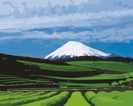 Campos de té verde y el Monte Fuji