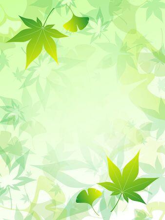 ginkgo: Maple and ginkgo carpet