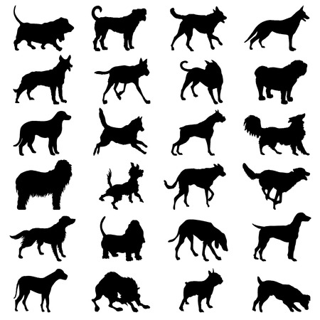 Dog icon great for any use. Vector EPS10. Vector