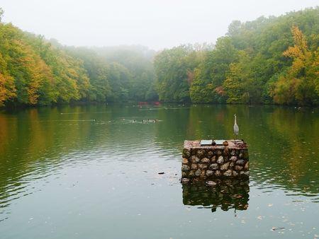 Autumn lake covered with fog photo