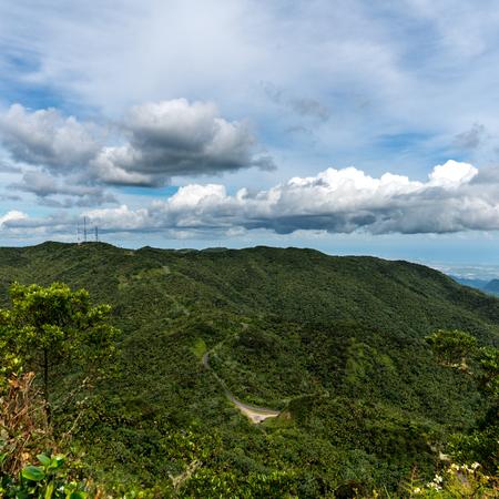 Cerro Punta Rain Forest