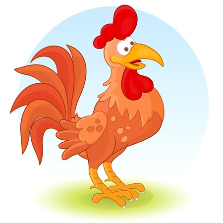 animal cock: Gallo Vettoriali
