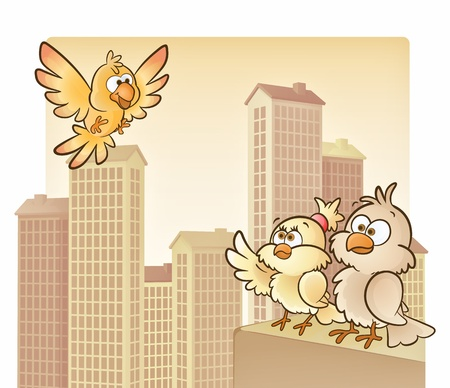 immigrant: Birds on top of the city buildings!