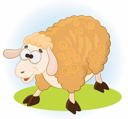 mouton cartoon: Brebis Illustration