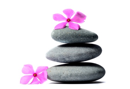Zen stones and flower photo