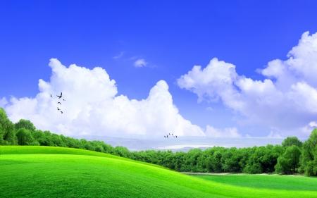 the sky clear: Hierba verde en la colina con la nube y el cielo azul Foto de archivo
