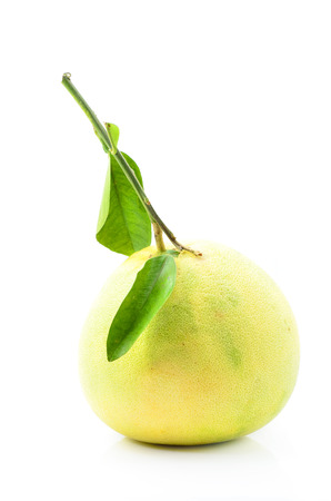 freshest: Pomelo fruit on white Backgorund