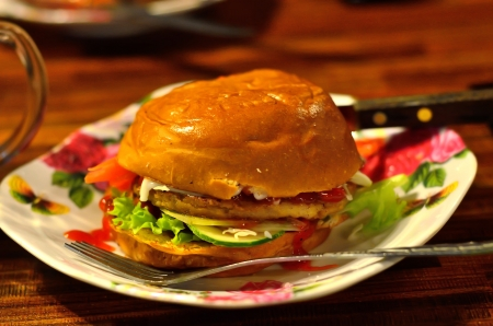 Homemade Burger photo