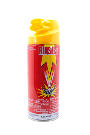 PAHANG, MALAYSIA-Dec 27, 2013: Photo of Ridsect product, Aerosol (AE) used for kill insects and mosquito, isolated on white background