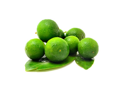 Calamansi on white background 版權商用圖片
