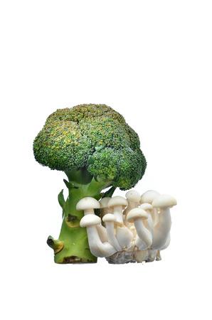 brocolli: Green Brocolli with white shimeji mushroom isolated on white background Stock Photo