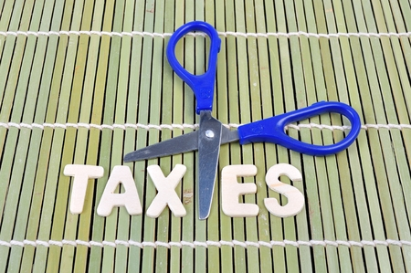 exemption: Scissors and the alphabet TAXES on bamboo rolling mat