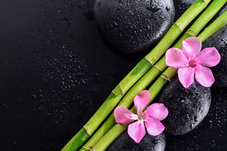 pink flower with black stones and bamboo grove on Wet black background. Spa Concept Stock Photo