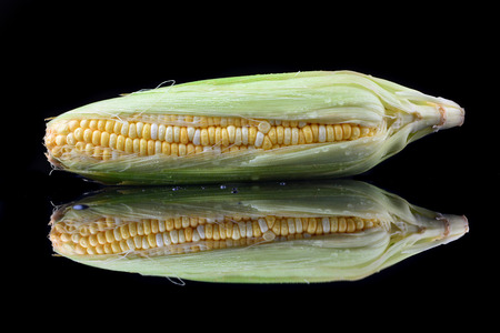 Corn on the cob isolated on a black background