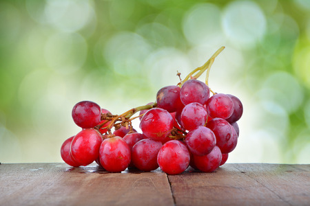 sappy: grapes on green background Stock Photo
