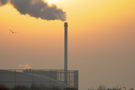 spews: A tall chimney spews out smoke against the setting sun.