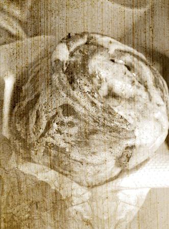 Fresh baked cinnamon roll vintage background