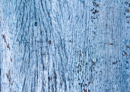 Abstract wooden texture photo