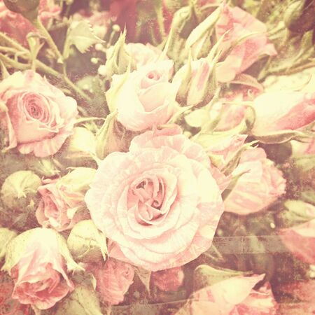 Background with retro look of tender garden flowers