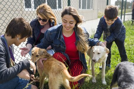 BAKU, AZERBAIJAN, 16 MAY 2018 : Girl volunteer in the nursery for dogs. Shelter for stray dogs.