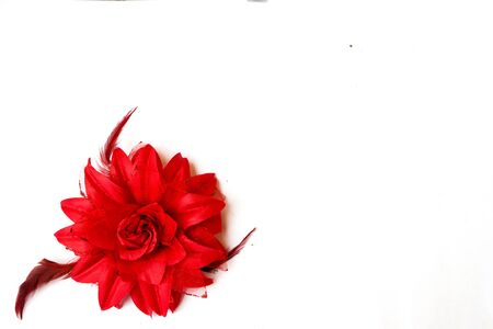 red fabric rose isolated on white background, postcard, letter, top view,romantic memory, white fabric background Stockfoto