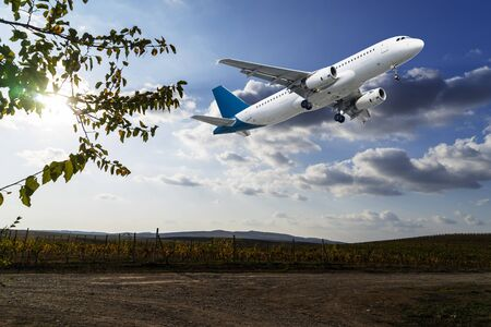 The plane is flying in the sky over a grape field