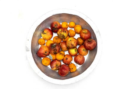 Rotten, spoiled apples and tangerines on an iron pan on a white background
