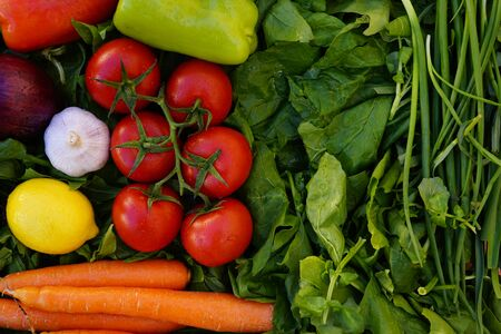 Composition with Various fresh vegetables, eggplants, onions,carrots, beets, tomatoes radishes, peppers on the green grass. The concept of healthy eating. Vegetarianism. Copy space.