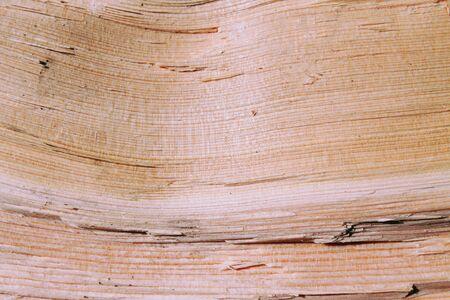 Wood grain Close background Фото со стока