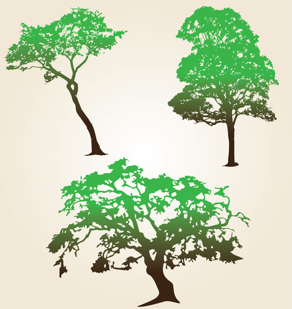 trees silhouette: Beautiful set of silhouette amazing trees for design. Vector illustration Illustration
