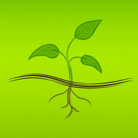 sketch picture of a green sprout, vector eps 10 illustration Vector
