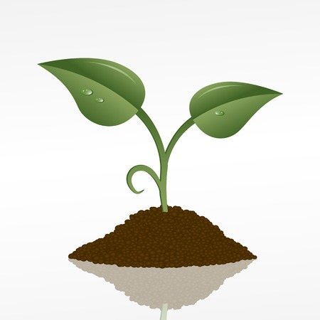 soil: picture of a green sprout in a fistful of soil, vector eps10 illustration
