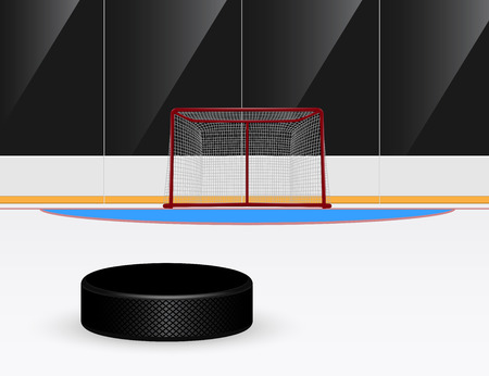 hockey goal: picture of ice hockey puck in front of goal