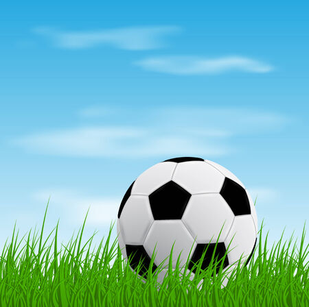 picture of a soccer ball on grass Vector