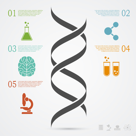 infographic template with DNA structure and icons, research, development, science and biotechnology concept
