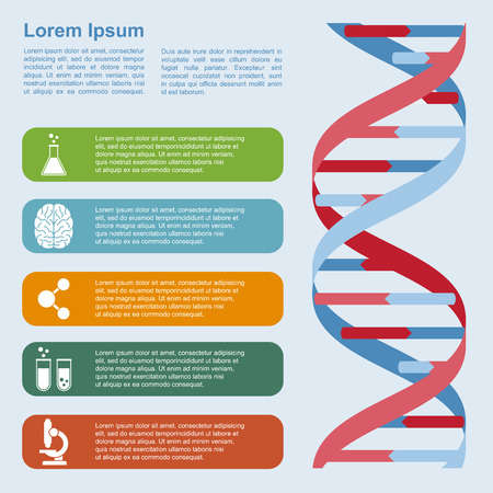 physiology: infographic template with DNA structure and icons, research, development, science and biotechnology concept