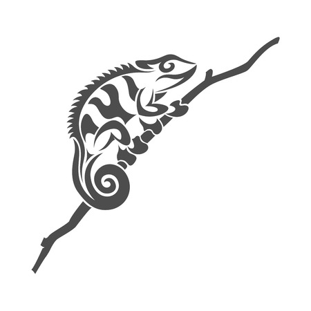 animal icon: picture of black and white chameleon lyzard in tribal style on white background