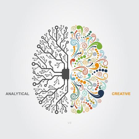 cerebro humano: izquierda y funciones del cerebro derecho concepto, analítico vs creatividad Vectores