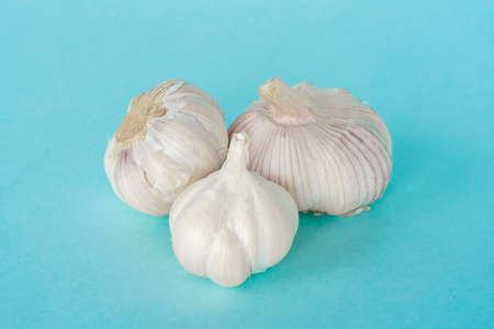 Group of fresh garlic heads on blue background. Close up stock photos Stockfoto