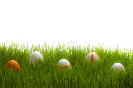 Five easter Eggs on green grass on white background photo