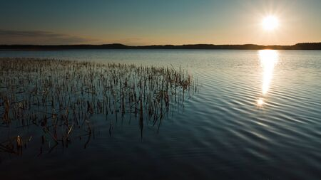 Lake with Reeds at Sunset photo