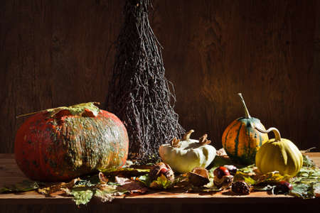 Autumn in vintage basement with vegetables photo