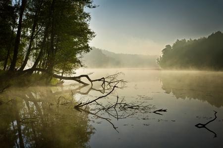 Fog and lake at sunrise in fall