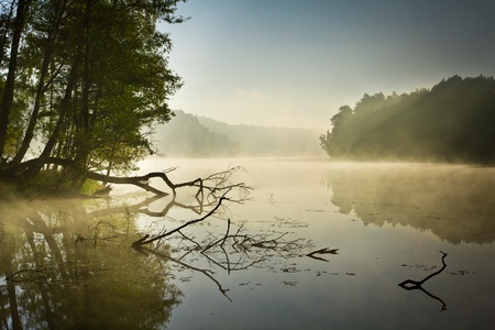 Fog over the lake at sunrise Stock Photo