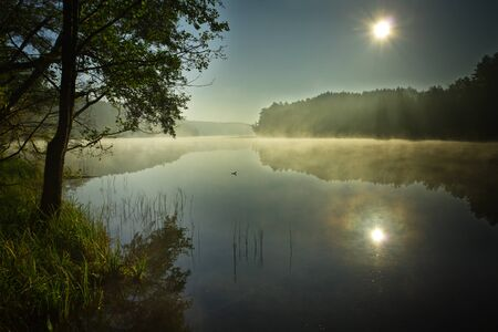 Sunrise at foggy lake  in autumn photo