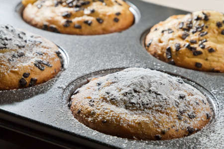 caster: Muffin with chocolate chip and caster sugar