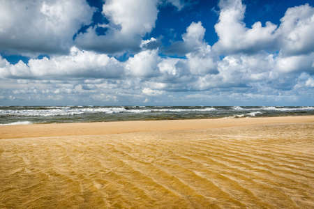 Sandy beach and north sea in summer Stock Photo - 12583899