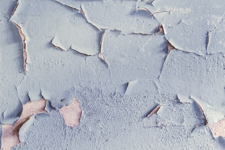 Oil Paint peeling off the wall photo